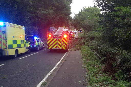 Emergency services at the scene of a fallen tree in Comber.