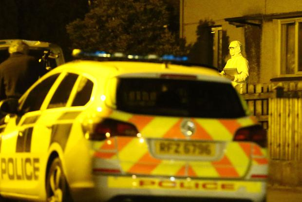 Police and forensic officers at the scene of an incident in the Limehurst Way area of Lisburn on September 25th 2016 , Northern Ireland (Photo by Kevin Scott / Presseye)
