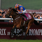 Striding to victory: Ryan Moore riding Found on the way to winning The Qatar Prix de l'Arc de Triomphe at Chantilly racecourse