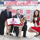 Top dog: Miss Northern Ireland Emma Carswell at the launch of the 2016 Tennent's Gold Cup with (left) Terry McCourt from Tennent's NI and John Connor, Drumbo Park Racing manager