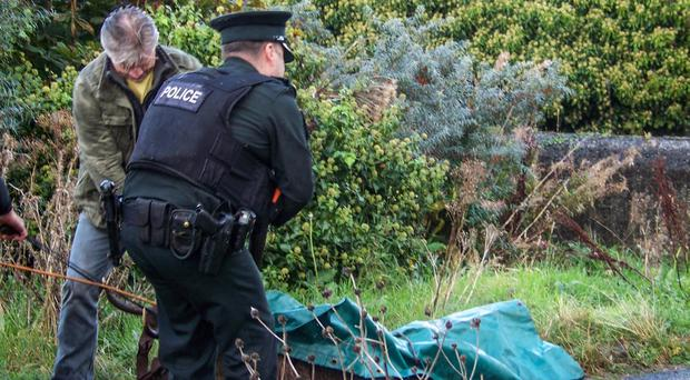 A stag which was on the loose in Newry, County Down, has been shot dead by police marksmen. The animal was in the St Patrick's Avenue area of the city. October 13, 2016