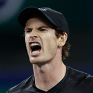 Andy Murray reacts after losing the point against David Goffin of Belgium yesterday