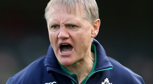 Challenge: Joe Schmidt will lead Irish into battle against the All Blacks
