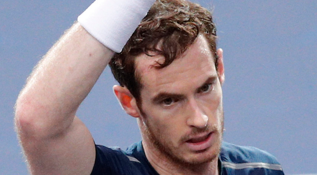 On march: Andy Murray celebrates after defeating Tomas Berdych