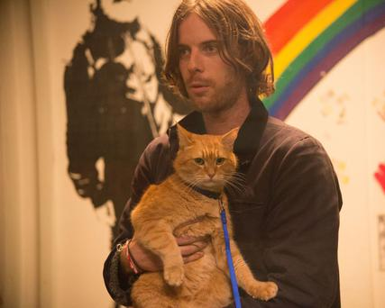 James (Luke Treadaway) and Bob the cat