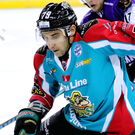 Net gains: Belfast Giants' James Desmarais set up the opening goal before getting his own name on the scoresheet with a delightful late double