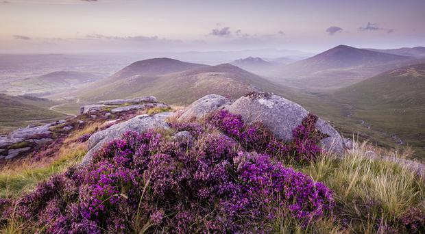 1.     Pierce's Castle, Mourne Mountains, by Ryan Simpson