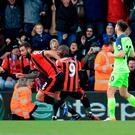 AFC Bournemouth's Steve Cook (second left) celebrates scoring his side's third goal of the game during the Premier League match at the Vitality Stadium, Bournemouth. PRESS ASSOCIATION Photo. Picture date: Sunday December 4, 2016. See PA story SOCCER Bournemouth. Photo credit should read: Adam Davy/PA Wire. RESTRICTIONS: EDITORIAL USE ONLY No use with unauthorised audio, video, data, fixture lists, club/league logos or