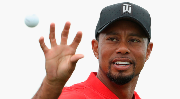 Good to be back: Tiger Woods in the Bahamas yesterday