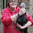 Barbara Mladek at her home in Moira with her turkeys