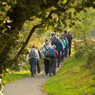 Roe Valley Country Park runs for three miles either side of the River Roe near Limavady. Northern Ireland Tourist Board