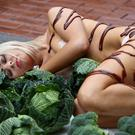 Katie Doherty pictured lying on a giant Christmas plate complete with to-scale cutlery, Brussels sprouts, and gravy. The nearly naked PETA supporter turns heads in Belfast on Wednesday with the message