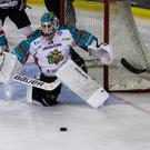 Belfast Giants v Manchester Storm: Deadlock was broken with only 89 seconds gone