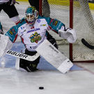 Class act: Giants' netminder Stephen Murphy was in great form against Manchester Storm last night in their Challenge Cup clash