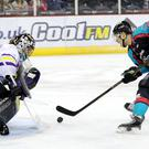 Belfast Giants' Chris Higgins celebrates scoring against Manchester Storm during Tuesday nights Challenge Cup Quarter Final at the SSE Arena, Belfast.