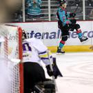 Get in: Chris Higgins celebrates scoring for the Giants against Manchester Storm on Tuesday night at the SSE Arena