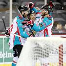 Back of the net: Belfast Giants' Steve Saviano celebrates scoring against the Edinburgh Capitals at the SSE Arena last night