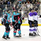 Press Eye - Belfast - Northern Ireland - 30th December 2016 - Photo by William Cherry Belfast Giants' Alex Foster celebrates scoring against Braehead Clan during Friday nights Elite Ice Hockey League game at the SSE Arena, Belfast.