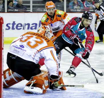 Fost action: Belfast Giants' Alex Foster takes on Sheffield Steelers' keeper Ervins Mustukovs at the SSE Arena last night
