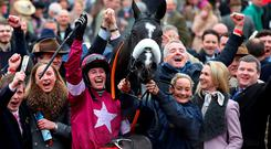 Memories: Don Cossack's connections, including jockey Bryan Cooper, trainer Gordon Elliott (right) and owner Michael O'Leary (centre) celebrate last year's Cheltenham Gold Cup win