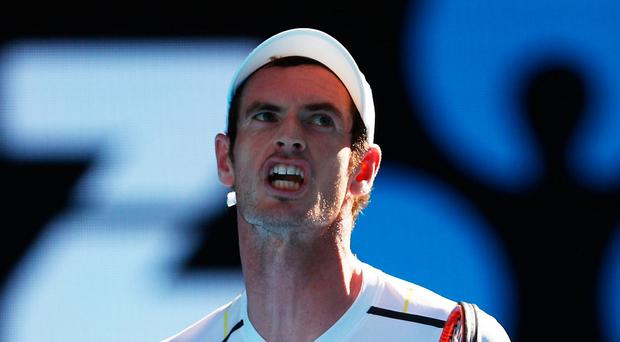 Work to do: Andy Murray labours to victory in the first round of the Australian Open