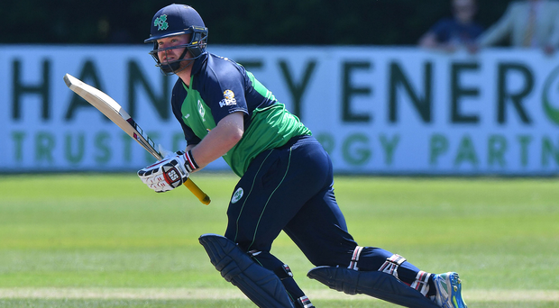 On the run: Paul Stirling made 60 in the semi-final win over Scotland but Ireland were unable to shine in the decider