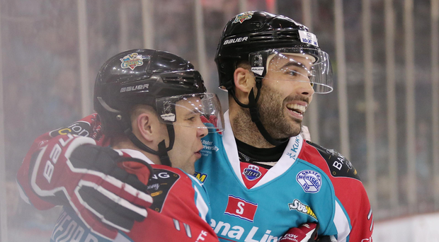 On target: Belfast Giants' David Rutherford celebrates with Alex Foster last night