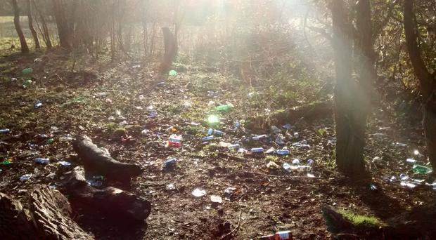 Some of the rubbish at Lagan Lands East, off Annadale Embankment