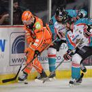 Sheffield Steelers 2-5 Stena Line Belfast Giants