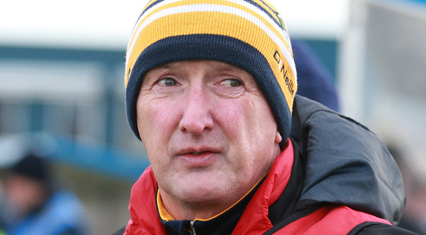 Happy man: Dominic McKinley is thrilled with his tight panel