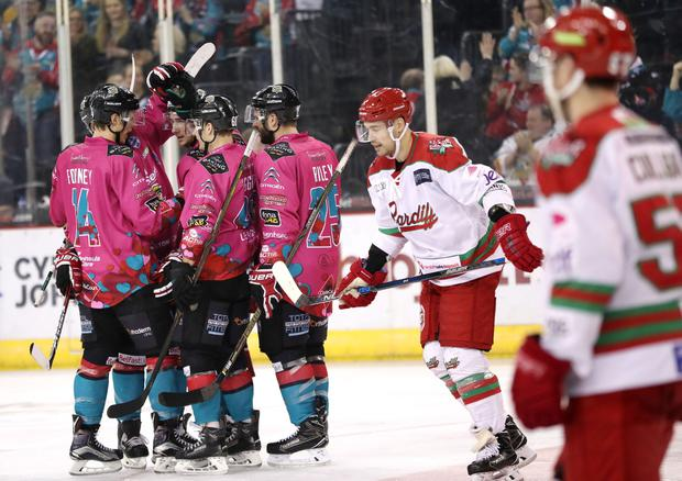 Belfast Giants' Jerome Leduc celebrates scoring his second goal against the Cardiff Devils' during Friday nights Elite Ice Hockey League game at the SSE Arena, Belfast. Press Eye - Belfast