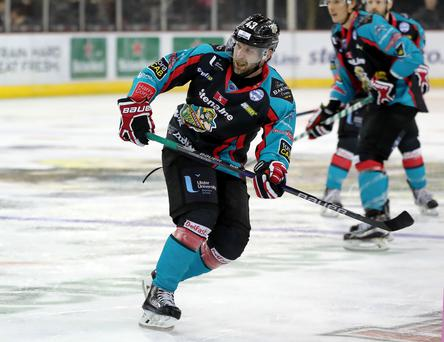 Disappointed: Belfast Giants player-coach Derrick Walser