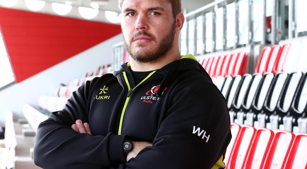 Meaning business: Wiehahn Herbst is expecting a hugely physical challenge against Treviso on Friday night