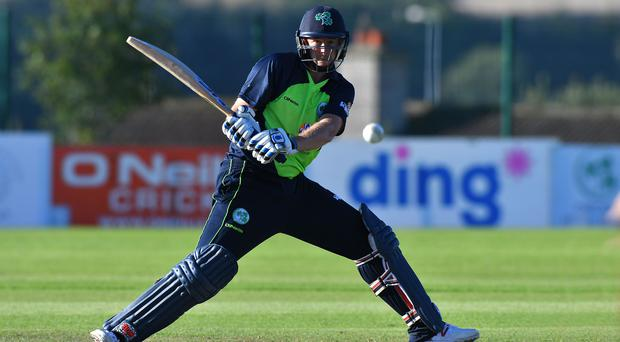 Uncertainty: Greg Thompson is a T20 specialist but may not even get a game for Ireland