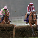 In the clear: Mega Fortune jumps the last en route to winning at Leopardstown last month