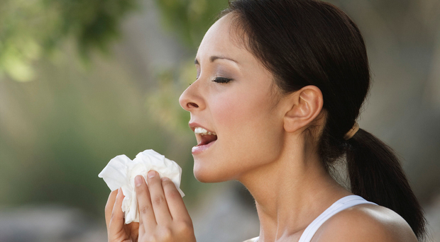 Common issue: around 18 million in the UK suffer from hay fever