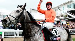 Jack Kennedy on board Labaik celebrates after winning the Sky Bet Supreme Novices Hurdle during Champion Day of the Cheltenham Festival at Cheltenham Racecourse on March 14, 2017 in Cheltenham, England. (Photo by Harry Trump/Getty Images)