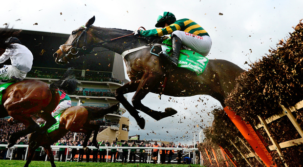 Going over: Buveur D'Air en route to victory in the Champion Hurdle at Cheltenham. Photo: Harry Trump/Getty Images