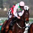 Douvan on his way to a sorry seventh place in the Queen Mother Champion Chase at Cheltenham yesterday