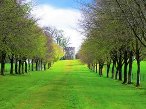 I used to live in Northern Ireland but I do not live there anymore. I have very fond memories of my life there during my time at Queen's University Belfast - here's my picture of Springhill House, Moneymore, Co. Derry - submitted by Michela Dettori
