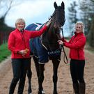Tops: Jessica Harrington, Sizing John and groom Ashley Hussey