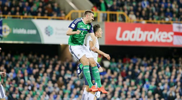 World power: Gareth McAuley is determined that Northern Ireland will make the most of their play-off shout