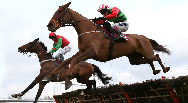 Grand stand: Definitly Red (right) is tipped to win Saturday's Aintree Grand National
