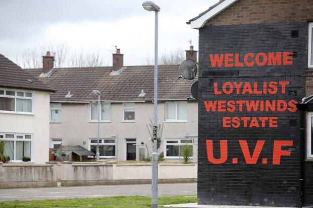 The attack took place in the Westwinds estate in Newtownards. Picture by Jonathan Porter/PressEye.com