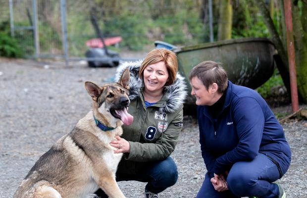 Shadow with new owner Samantha Kerr and Cathy Quinn from the German Shepherd RRR, based near Bangor