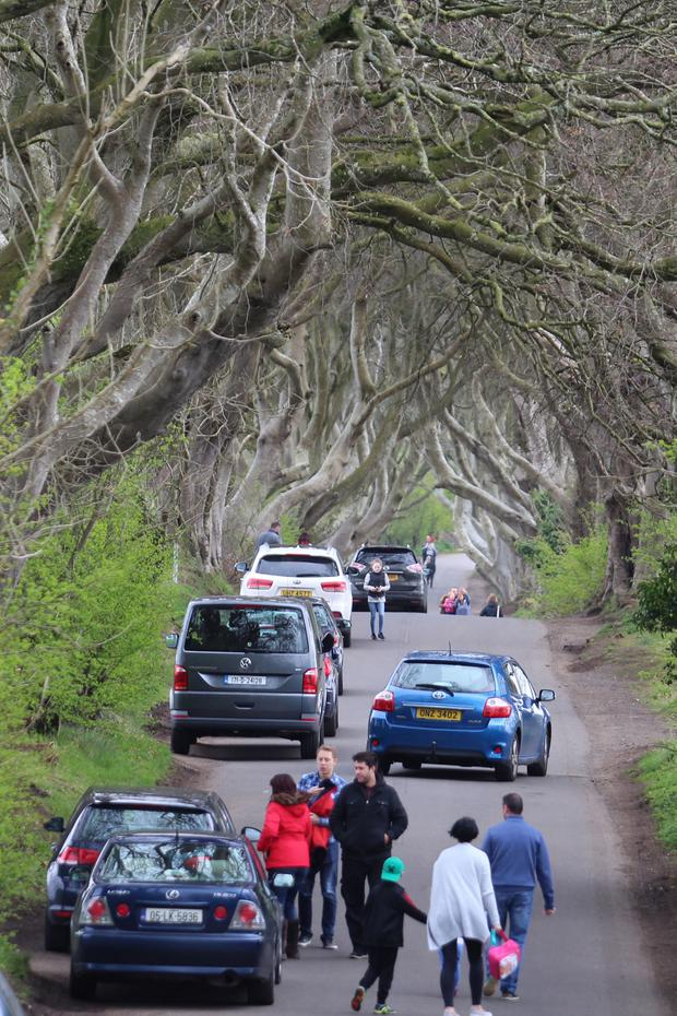 Dark Hedges on Easter Tuesday.