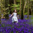 Darcy Bell Cooney dances through a bluebell meadow in a forest near Newry