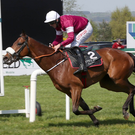 Oh Boy: Gordon Elliott's Ballela Boy takes victory at Down Royal yesterday under Davy Russell