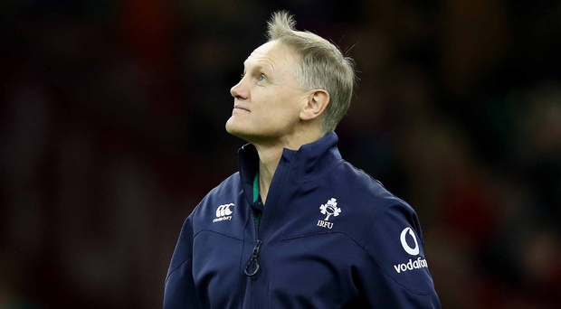 Looking ahead: Joe Schmidt already has the 2019 World Cup in his sights ahead of Ireland's games with the USA and Japan over the summer