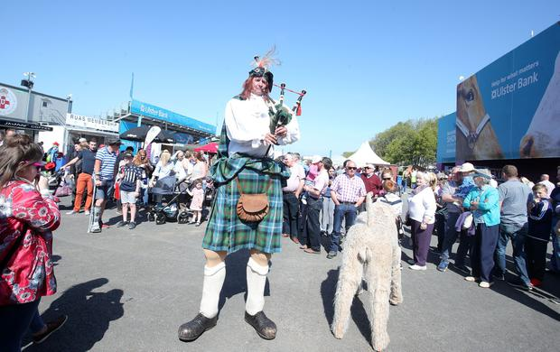 Day one, Balmoral Show 2017 at Balmoral Park. A giant Scottish bagpiper and his pet dog entertains the ground. Picture by Jonathan Porter/PressEye.com